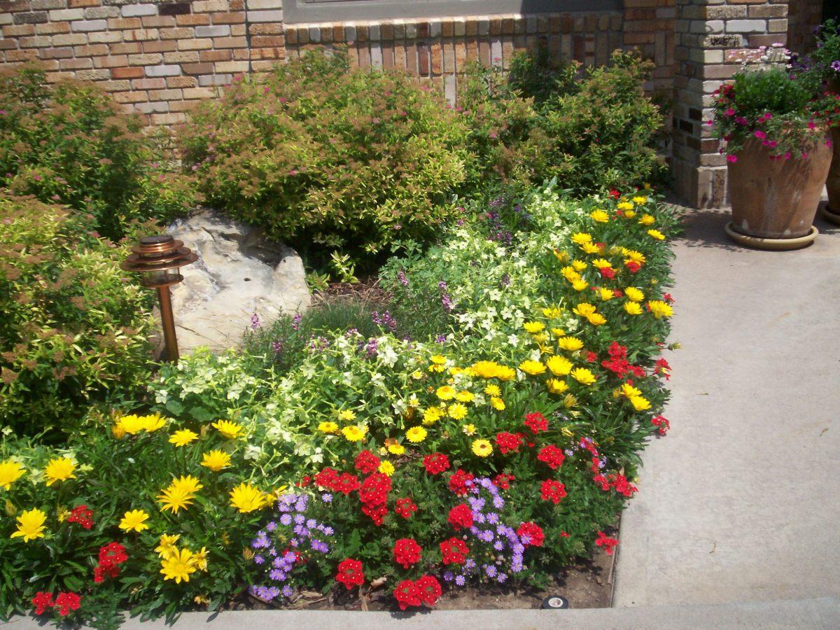 Balogh gardens denver gardening and landscaping annual for Annual garden designs