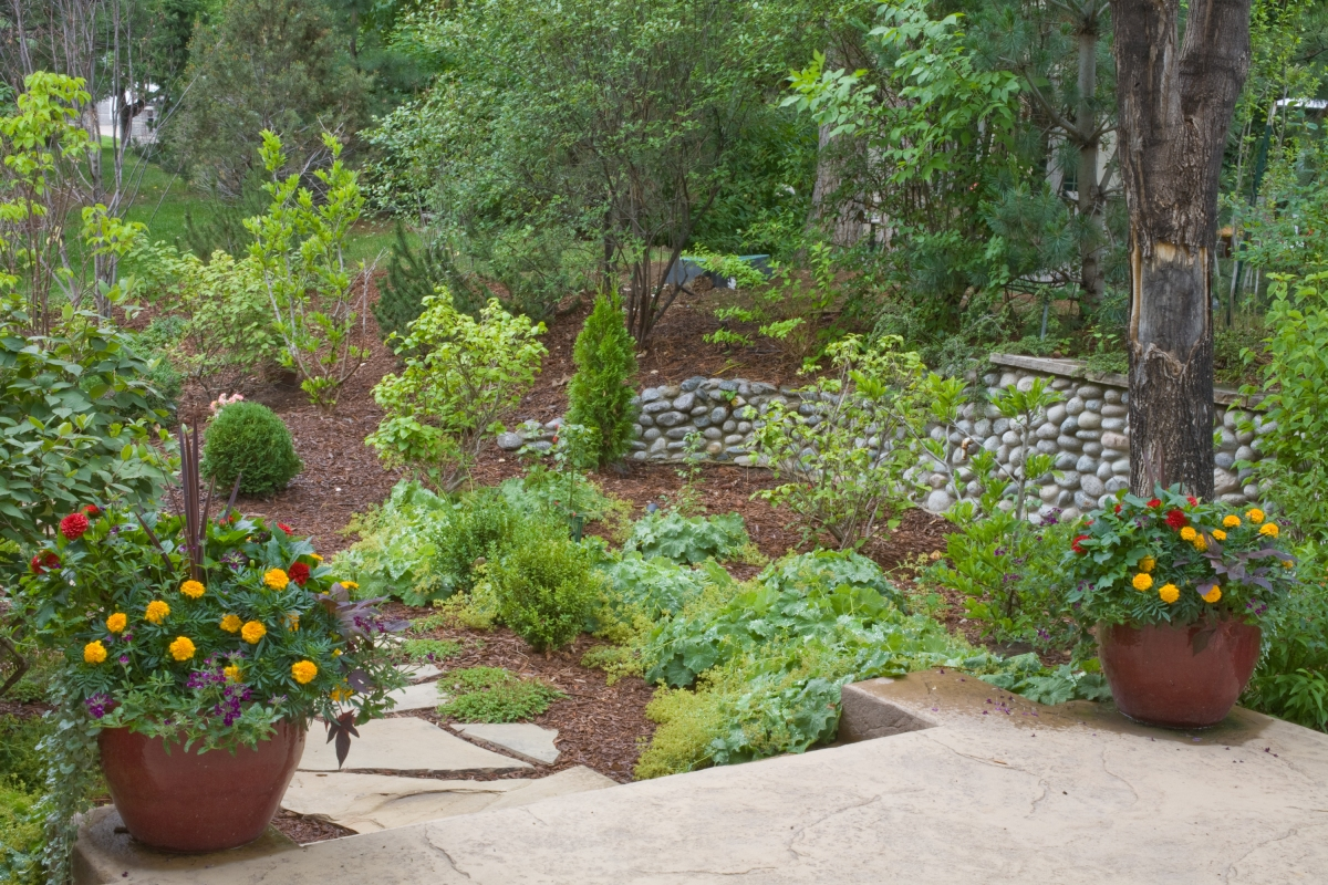 Balogh gardens denver gardening and landscaping for Landscaping with perennials designs