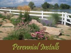 Balogh Gardens - Denver Gardening and Landscaping - Perennial Installs