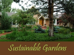 Balogh Gardens - Denver Gardening and Landscaping - Sustainable Gardens