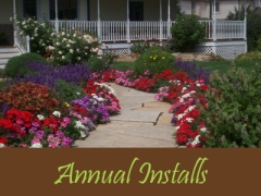 Balogh Gardens - Denver Gardening and Landscaping - Annual Installs